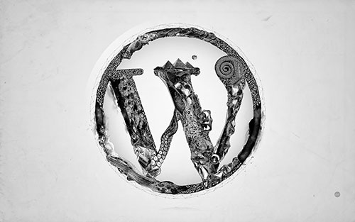 plugins basicos de wordpress