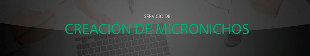 servicio de creación de micronichos