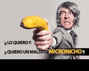 servicio de micronichos