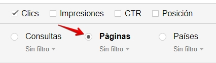 search-console-filtrar-por-paginas